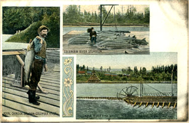 An example of one of the postcards.